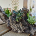 Composition florale sur bois: la nature reprend ses droits